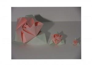 3-roses-2-300x212